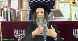 כמה יהודי חשוב אצל ה'-פרשת בלק-הרב עופר ארז