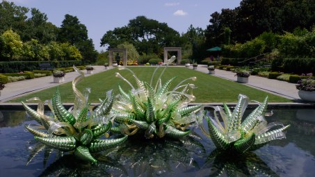Dallas Arboreatum Chihuly Collection