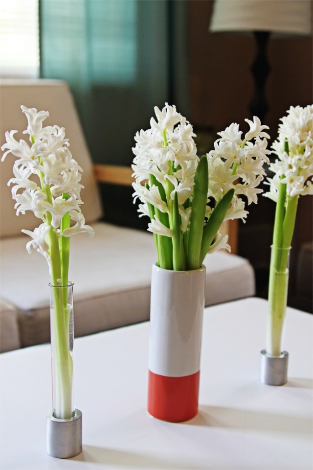 Brewed-Together-Hyacinth-Tube-Bouquets-5