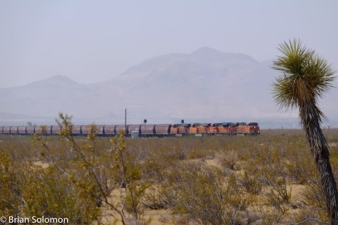 A southward (old Southern Pacific timetable direction west) BNSF 'earthworm' unit grain train climbs across the desert floor near Mojave, California—July2016.