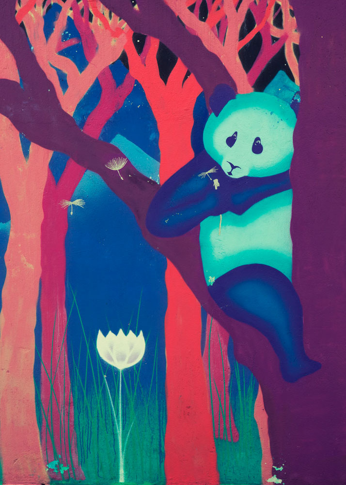 psychadelic panda graffiti Sao Paulo