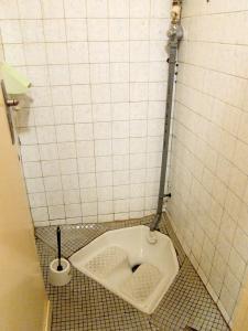 squat-toilet-small