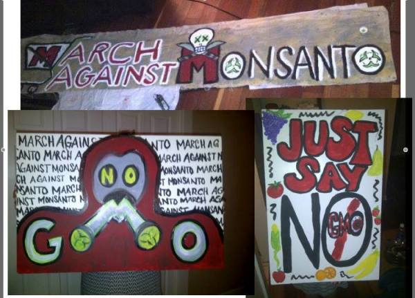 stop-monsanto-day-27