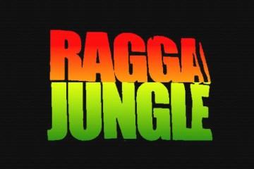 ragga-jungle