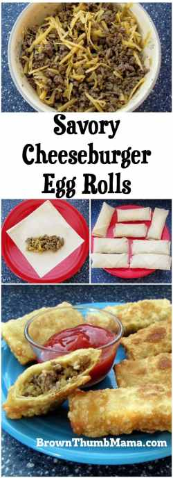 Small Of Cheeseburger Egg Rolls