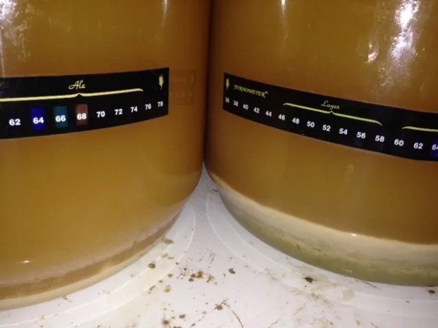 17_yeast_cake_difference