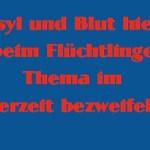 """Screenshot einer Haiku-Strophe aus dem Poetry-Text der PolitikerInnen-Worte """"Beim Asyl Blick"""""""