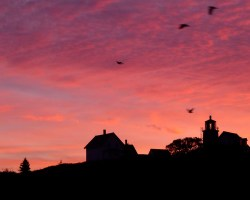 sunrise-monhegan-25Sept-2014