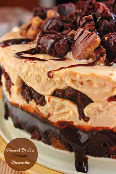 peanut butter cheesecake-2