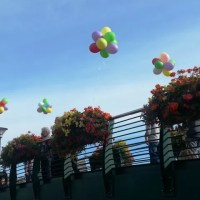 balloons and flowers in Banbury