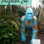 Meeting the animals at Paignton Zoo