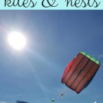 Kite flying and nest building – kite giveaway