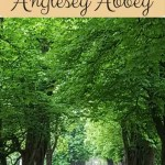 Enjoying natural play at Anglesey Abbey and Gardens