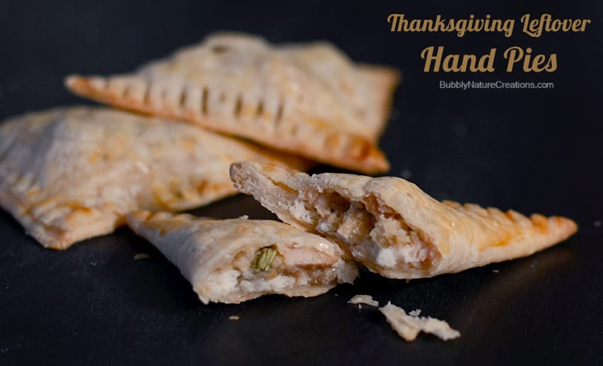 Thanksgiving Leftover Handpies 2