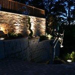 Trees, shrubs, planters, and sculptures are all features that good lighting design will showcase at night.