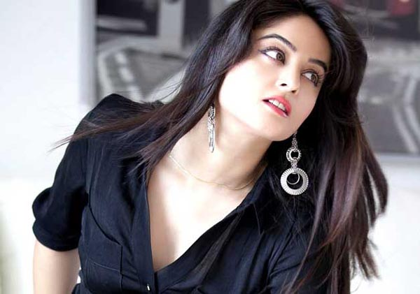 Mahi Vij - List of Contestants of Bigg Boss 9