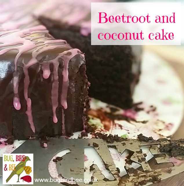 Beetroot And Coconut Cake from Baking With Vegetables by Parragon books