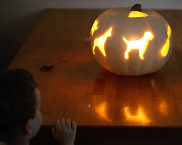 cookie-cutter-pumpkin-light