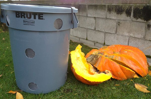 compost-bin-rotting-pumpkins