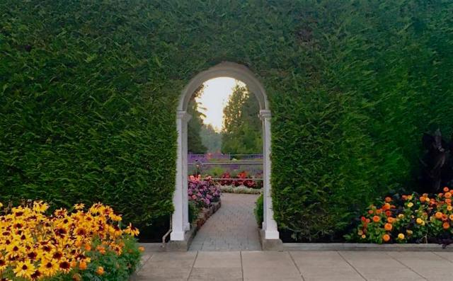 Image of an arched doorway through a thick hedge, with bright sunlight on the other side and flowers through the doorway and in the foreground.