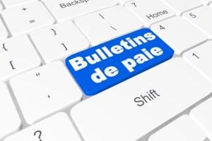 Bulletins de paie :  fiche de paie 2016 Aide à domicile Excel avec formules
