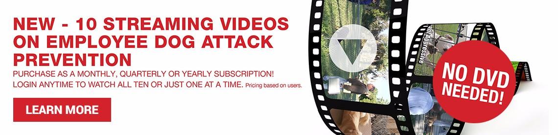 subscription-slide