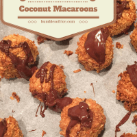 Healthy Coconut Macaroons from The Happy Pear