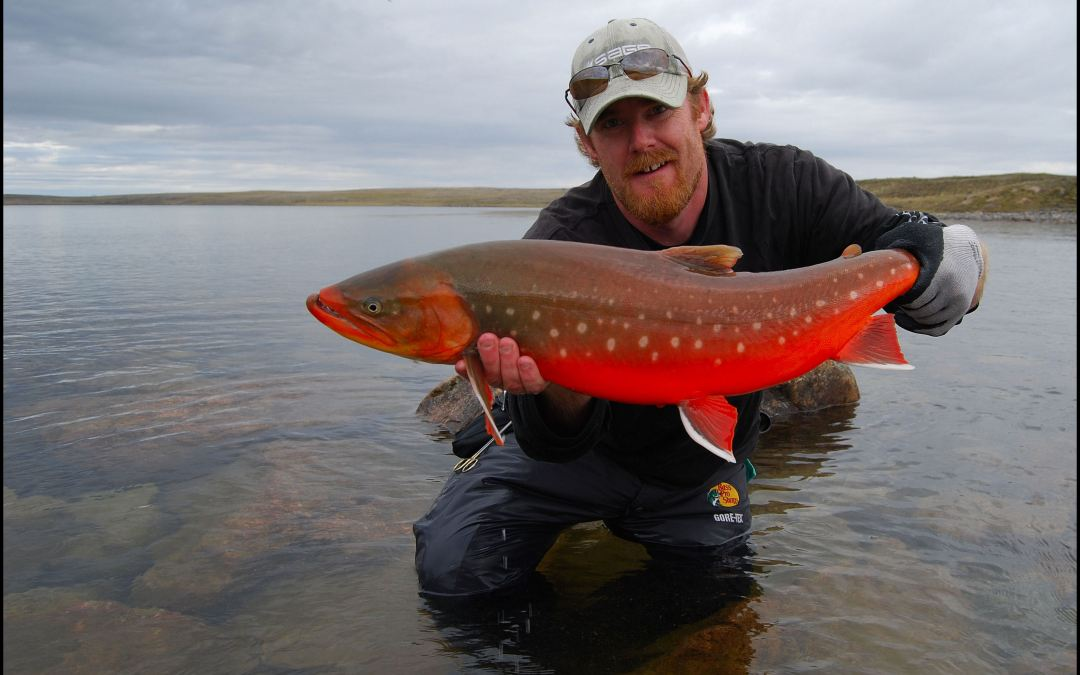 A NUNAVUT NOMAD FOR ARCTIC CHAR.