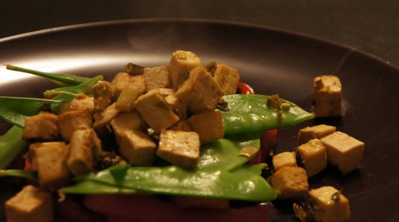 Tofu on a bed of veggies.