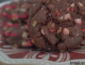 andes peppermint crunch cookies