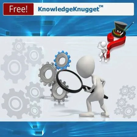 Business Process Analysis Requirements Discovery