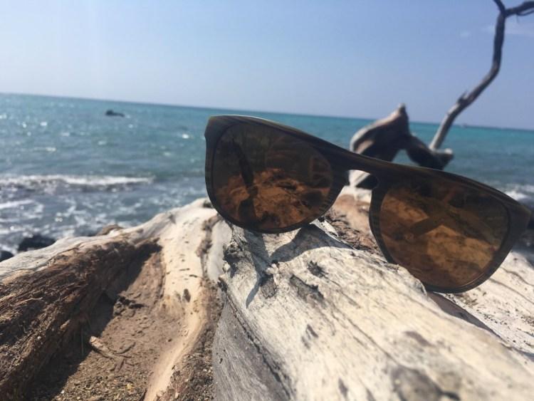 Native Eyewear Sanitas Review