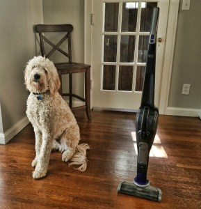 Black & Decker PET 2-IN-1 Vacuum Review