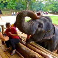 Sri Lanka: The Cultural Triangle