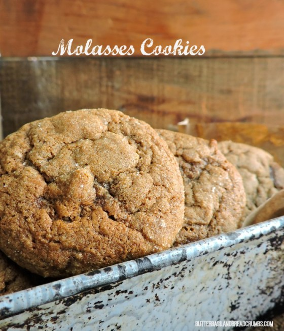 molasses cookies 2a