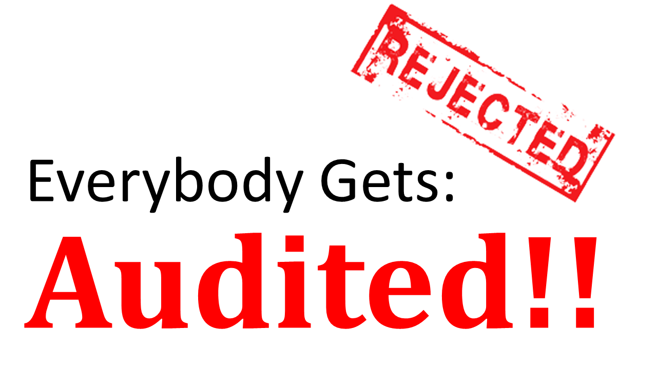 Everybody gets audited