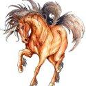 unicorn-stories