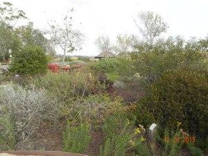 BV nature trail dec 2015 S Martin