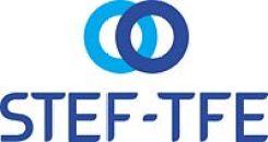 STEF-TFE-12
