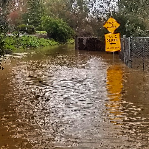Los Gatos Creek Trail flooding