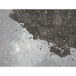 Small Crop Of Olympus Tg 870