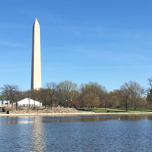 Picture perfect spring day in the city. #dc #nofilter