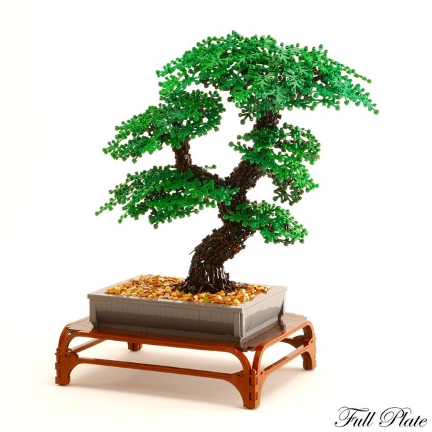 Bonsai (1 of 3)