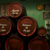 Feeling Fino: Bars and Restaurants in Jerez