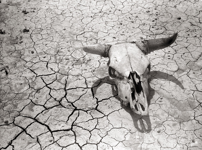 Rothstein, Arthur, photographer. Dry and parched earth in the badlands of South Dakota. May, 1936.