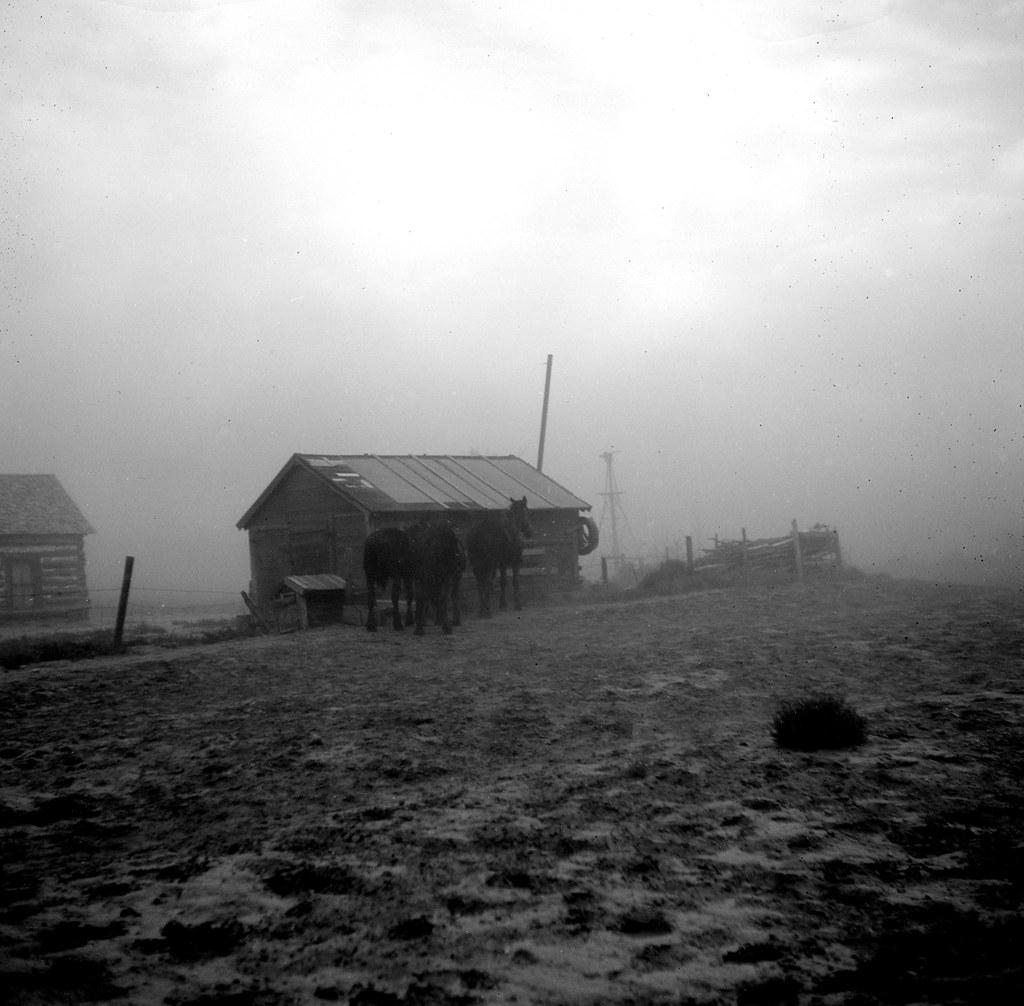 Lee, Russell, photographer. Dust storm near Williston, North Dakota. Oct, 1937.