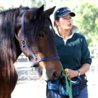 Jane Myers of Equiculture