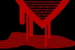 NSA Heartbleed Security Flaw
