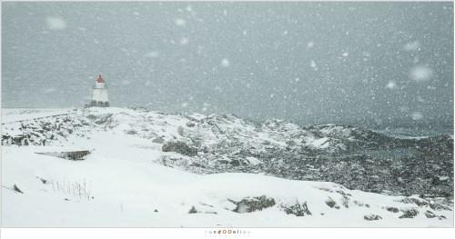 Overvallen door een fikse sneeuwstorm bij de vuurtoren van Laukvik. Een grijze wereld met minimaal zicht. Bergen zijn verdwenen en de zee lijkt uit het niets te ontstaan. Tien minuten later is het voorbij en breekt de bewolking weer.