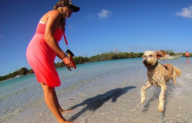 Nicole Miers-Pandolfi, owner of SUP Englewood, during a kayak tour in Stump Pass Beach State Park. We met a couple of dogs. Englewood, Fla., May 17, 2015.